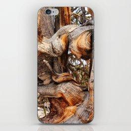 Bristlecone 5 iPhone Skin