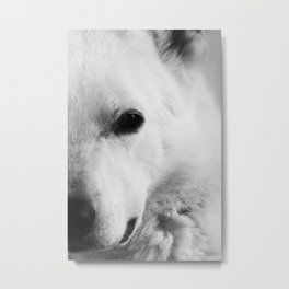 White German Shepherd Metal Print