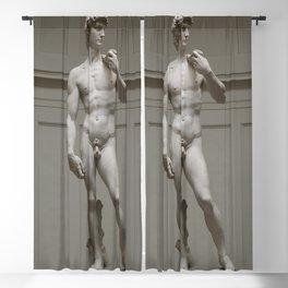 Michaelangelo's David Blackout Curtain