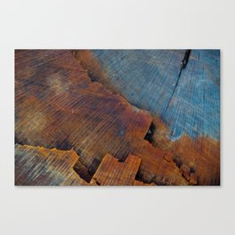 Colored Wood Canvas Print