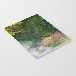 Alley of lime trees in autumn Notebook