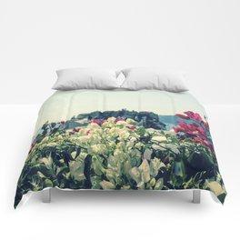 Santorini, Greece 3 Comforters
