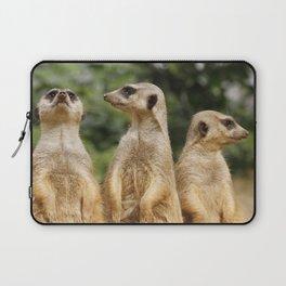 Meerkat20151204 Laptop Sleeve