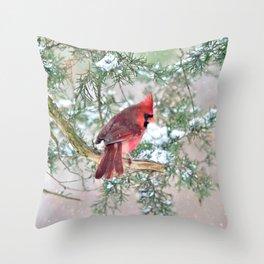 Snow Day Cardinal Throw Pillow