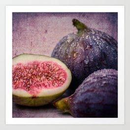 figs -blue 1x1 Art Print