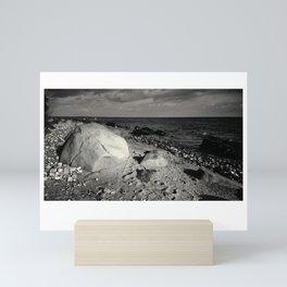 Black and white  stones Mini Art Print