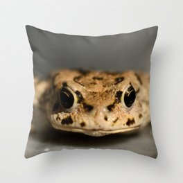 Kiss That Frog Throw Pillow