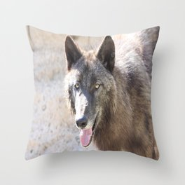 Sun on one side, shadow wolf on the other Throw Pillow