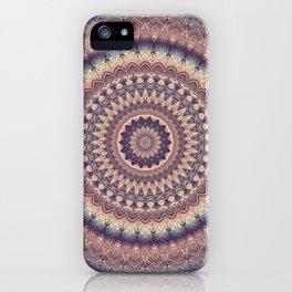 Mandala 512 iPhone Case