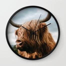 Scottish Highland Cattle - Animal Photography Wall Clock
