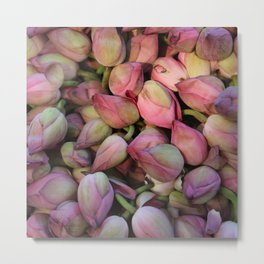 Lotos Flower Metal Print