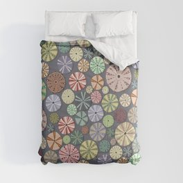 Sea Urchins - Pattern Comforters