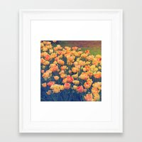tulips Framed Art Prints featuring Tulips  by Juliana RW