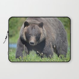 Brown Bear - Alaska Laptop Sleeve