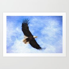 Bald Eagle Soaring In The Sky Art Print