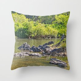 Beautiful rocks in the tranquil river Throw Pillow