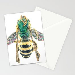 sweat bee, abeille verte, agapostemon Stationery Cards