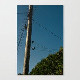 Laundry Pole Canvas Print