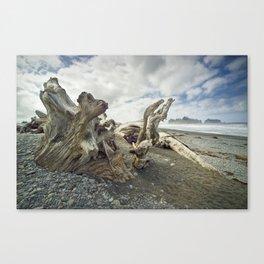 Driftwood on Rialto Beach No 0163 Canvas Print