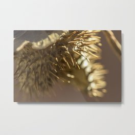 Thistle in Zion Metal Print