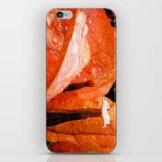 Tangerine Dreams iPhone & iPod Skin