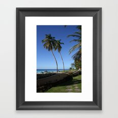 Palm Tree Barbados Framed Art Print