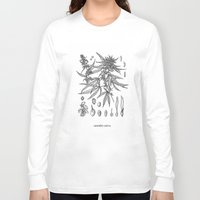 cannabis Long Sleeve T-shirts featuring cannabis sativa by Oxxygene