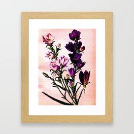 11719564703 Framed Art Print