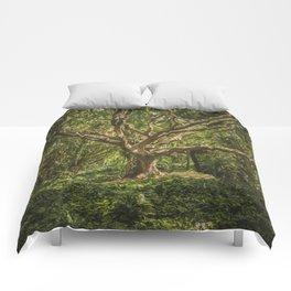 Spirits inside the wood Comforters