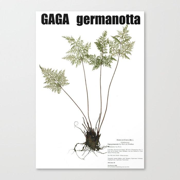 Gaga germanotta Canvas Print
