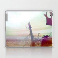 Driftwood Beach Laptop & iPad Skin