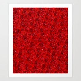 Scarlet Eft Art Print