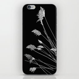 Dry Reeds on Black iPhone Skin