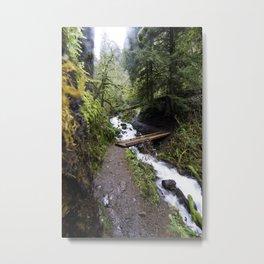 River Crossing Metal Print