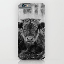 Highland Cow baby calf | Scottish Highlanders, cattle, cows in the Netherlands | Wild animals | Fine art travel and nature photography art print iPhone Case