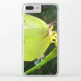 Brimstone butterfly and yellow flower Clear iPhone Case