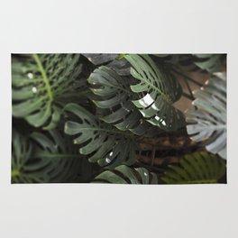 Monstera - botanical photography Rug