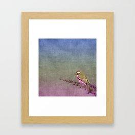 Beautiful bird sitting on brach with purple flowers Framed Art Print