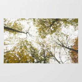 Top of the Trees Rug