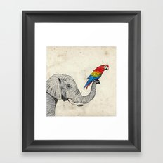 Elephant and Scarlet Macaw Framed Art Print
