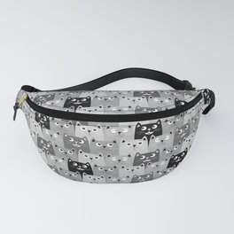 078 Fanny Pack