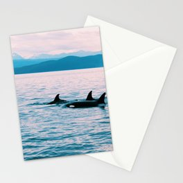 Orcas Swimming Through the Evening Stationery Cards