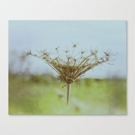 Remains Canvas Print