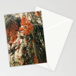 Winter Mood Florals Photography Stationery Cards