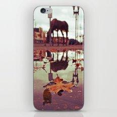 Roadside water iPhone & iPod Skin