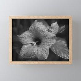 Dew Diligence Framed Mini Art Print