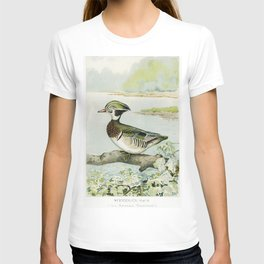 Woodduck Male (Aix Sponsa Swainson) illustrated by JL Ridgway (1859-1947) and WB Gillette (1864-1937 T-shirt