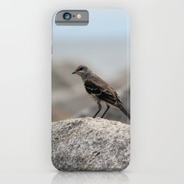 Bird On A Rock By The Sea iPhone Case
