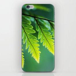 Shades of Green iPhone Skin