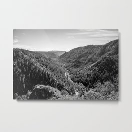 Black & White Arizona Metal Print